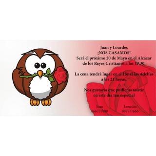 Invitacion de boda buho con rosa