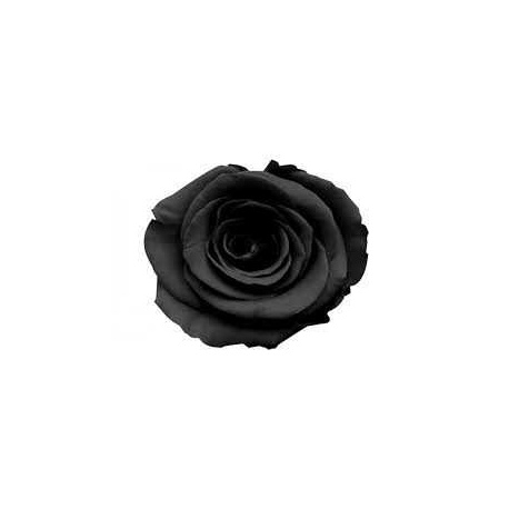 ROSA ETERNA COLOR NEGRO 60 cm