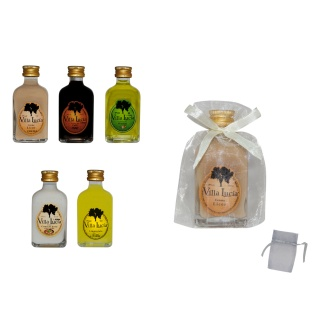 BOTELLA DE LICOR MINI + BOLSA TUL LISA (8525)